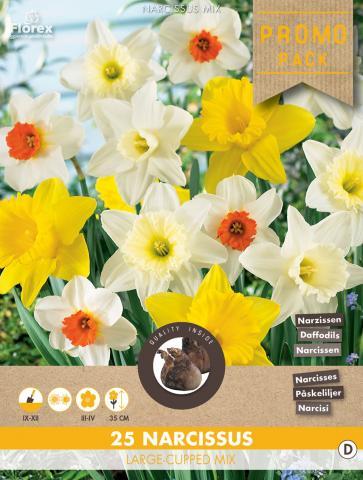 Луковици Нарциси Large flowering - mixed 25бр.