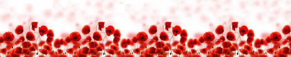 Принт гръб с цветя, код 09