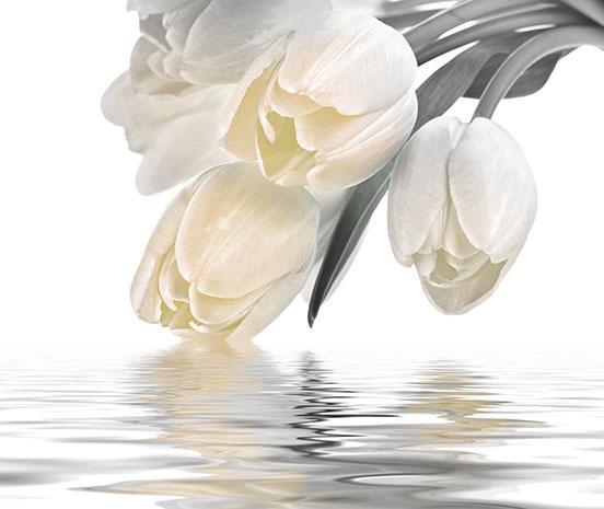 Декоративна фаянсова плочка Love Tulips Cream 50x60 см