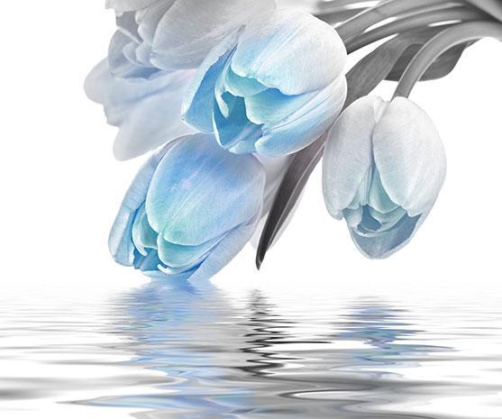 Декоративна фаянсова плочка Love Tulips Blue 50x60 см