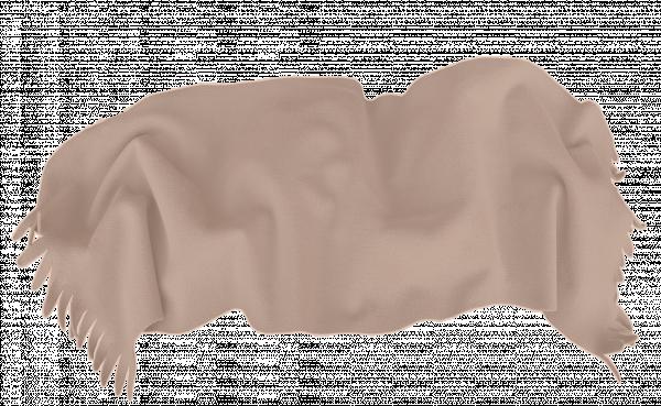 Одеяло Полар 100/150 с ресни беж