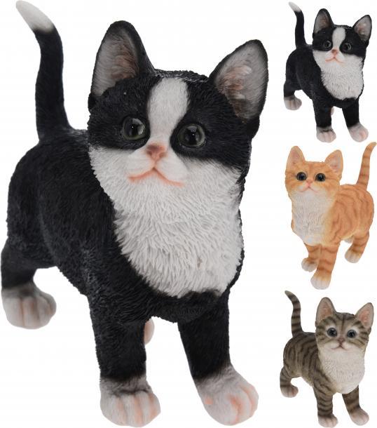 Декоративна котка