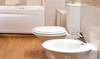 Как да изберем тоалетна чиния