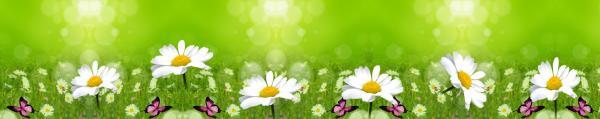 Принт гръб с цветя, код 023