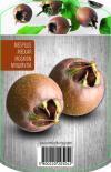 Овошки с пакетиран корен специални