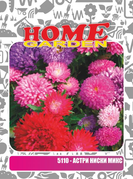 Семена за цветя HomeGarden АСТРИ НИСКИ МИКС