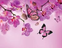 Картина Spring Sensations 45x60 см