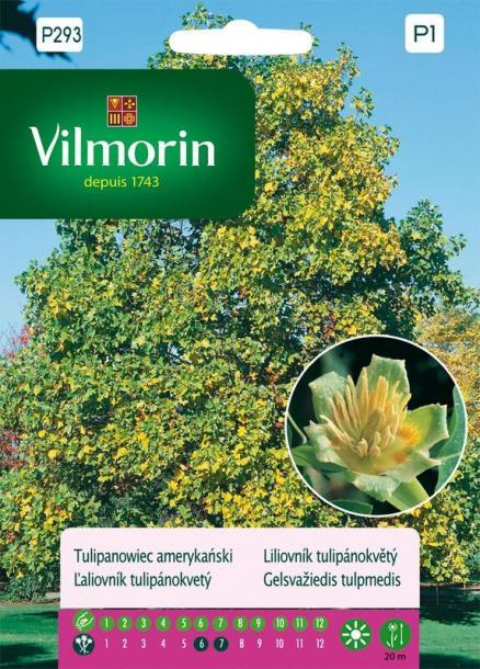 Вилморин семена Лирово дърво
