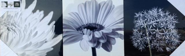 Картина цветя черно/бели 3 бр - 20*20см