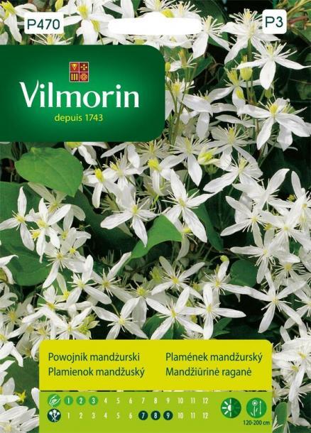 Вилморин семена Манджурски Клематис