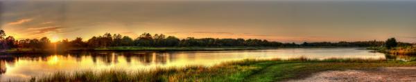 Принт гръб с пейзаж, код 026