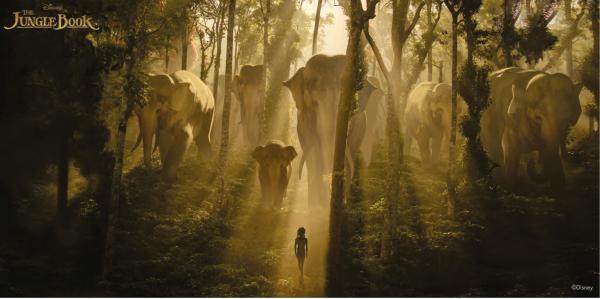 Фототапет Jungle Book 100x200 см