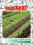 Семена за зеленчуци HomeGarden САЛАТА MIX