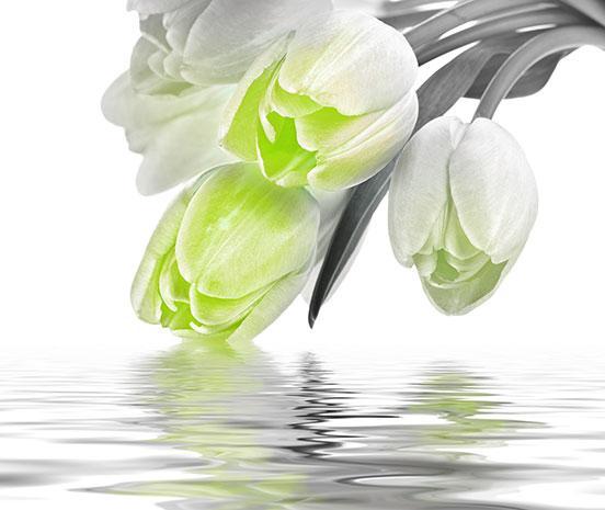 Декоративна фаянсова плочка Love Tulips Green 50x60 см