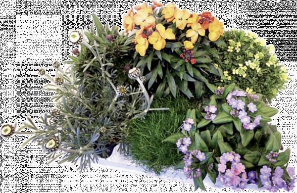 Микс пролетни цветя Ф:12см