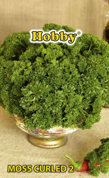 HOBBY семена магданоз MOSS CURLED 2