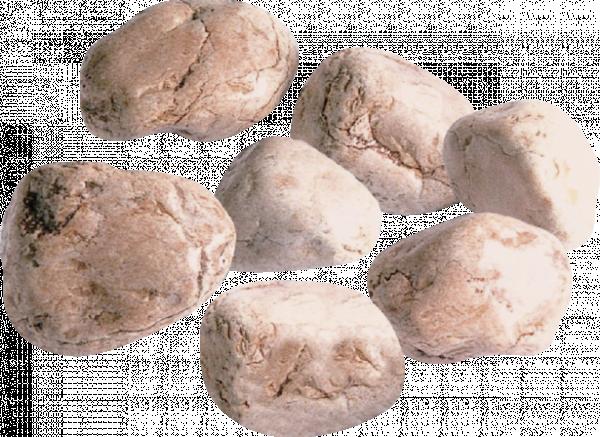 Речни камъни 60-100мм 25 кг