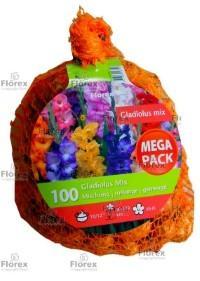Луковици Budget Big Bag - Гладиола грандифлора микс