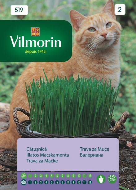 Котешка трева