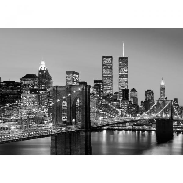 Фототапет Manhattan on Night 366х254 см