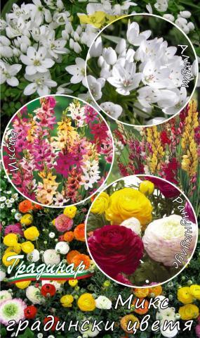 Луковици Микс градински цветя