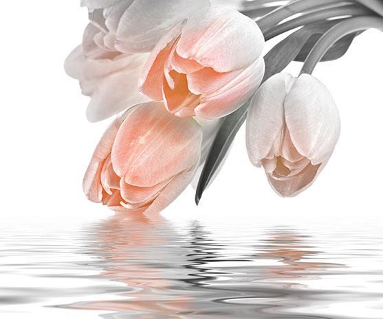 Декоративна фаянсова плочка Love Tulips Salmon 50x60 см