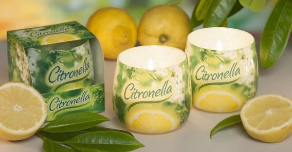 Свещ чаша Citronella анти-комар