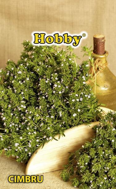 HOBBY семена чубрица