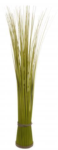 Тревен храст 10/80 см.