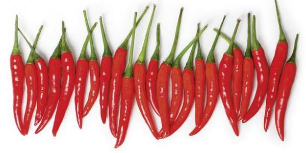 Картина 60x30,''Red hot chilli''