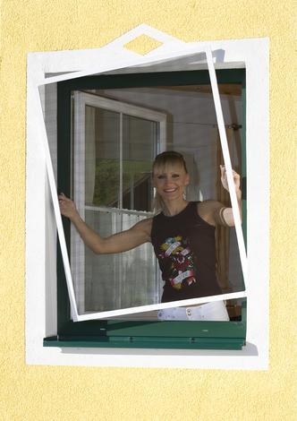 Прозорец за защита от насекоми