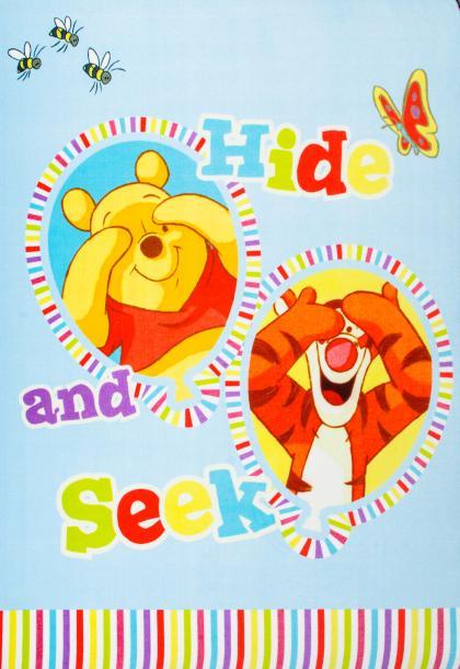 Winnie The Pooh 1.6/2.4-906