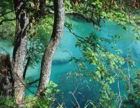 Картина Magical Lake 35x45 см