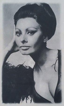 Декор Sophia Loren 25x40