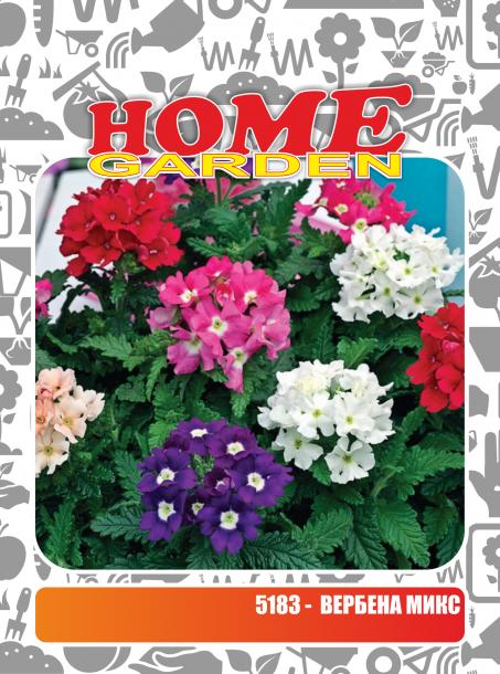 Семена за цветя HomeGarden ВЕРБЕНА МИКС
