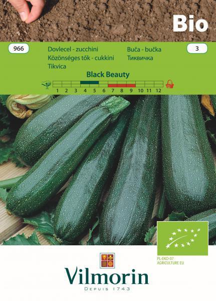Вилморин семена Тиквичка Black Beauty БИО