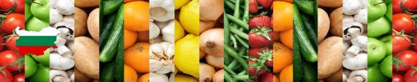Принт гръб с плод и зеленчук , код 016