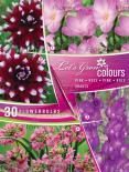 Луковици Let's Grow Colours Violet Shades