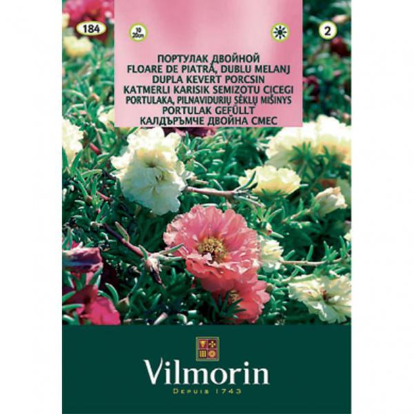 Калдъръмче двойна смес- Вилморин
