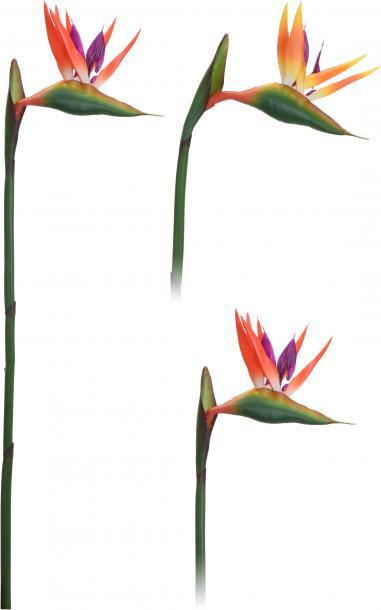 Стрелиция - изкуствено цвете